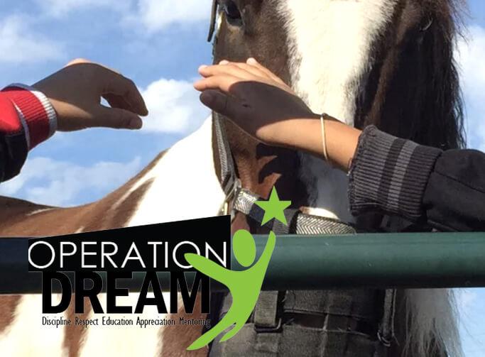 operation dream